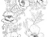Drawing Of Flowers for Embroidery Digital Two for Tuesday Beautiful Flower Designs for Embroidery or