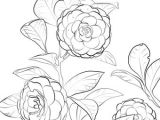 Drawing Of Flowers In the Garden Japanese Camellia Coloring Page Flower Coloring Coloring Pages