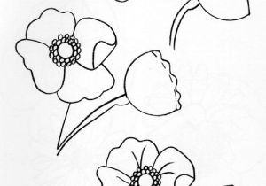 Drawing Of Flowers Pinterest Pin by Lori Gagnon On How to Draw Pinterest Drawing Step Draw