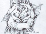 Drawing Of Flowers with Leaves Black Rose Arm Tattoos for Women Rose and Its Leaves Drawing