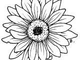 Drawing Of Gerbera Flower Beccy S Place Sunflower Gerbera Printable 3 Tattoos Digital