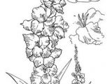 Drawing Of Gladiolus Flower 17 Best Gladiolus Tattoo Black Images Gladiolus Flower Tattoos