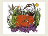 Drawing Of Grass Flowers Snug My Cozy Little Fox Sketch Sun Nature Handrawn Drawing