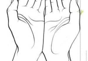 Drawing Of Hands Cupped 301 Best Hands and Feet Images Drawing Techniques Drawing Tips