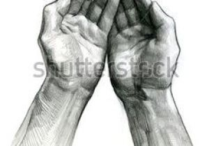 Drawing Of Hands Cupped 315 Best Arms and Hands Images In 2019 Drawing Hands Drawing