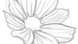 Drawing Of Magical Flower 361 Best Drawing Flowers Images Drawings Drawing Techniques