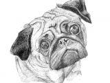 Drawing Of My Dog Pug 25 Print Art Drawing Ww Petsbypencil Co Nz Prints Draw