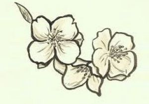 Drawing Of Sampaguita Flower 16 Best Tats Images On Pinterest Filipino Tattoos Philippines