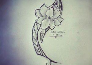 Drawing Of Sampaguita Flower Sampaguita Flower Drawing Google Search Filipinotattoosancient