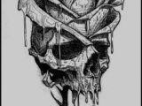 Drawing Of Skulls and Roses 105 Best Skulls Roses Images In 2019 Skulls Skeletons Skull