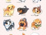 Drawing Of the Back Of A Dog Pin by Delaney Gardiner On Art Help Pinterest Cute Animals Cute