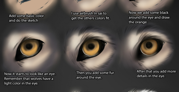 Drawing Of Wolf Eyes Wolf Eye Tutorial by themysticwolf Deviantart Com On Deviantart