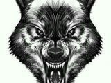 Drawing Of Wolf Face Pin by Clips Scott On My Next Tatt Wolf Tattoos Tattoos Wolf