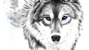 Drawing Of Wolf Face Wolf Tattoo Tumblr Love This Wolf and Moon Tattoooooo