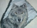Drawing Of Wolves Hunting 179 Best Wolves Rock Images Wolves Wolf Bad Wolf