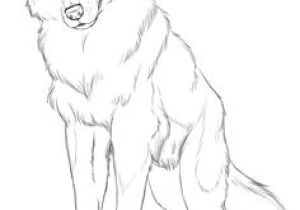 Drawing Pastel Wolf 109 Best Wolf Images Wolf Drawings Art Drawings Draw Animals