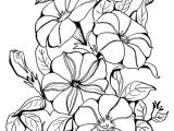 Drawing Picture Of Flower Vase Drawing Of Flowers Step by Step together with Fresh Free Relaxing