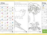Drawing Pictures Of Non Living Things Year 3 Biological Science Questions and Colouring Worksheet