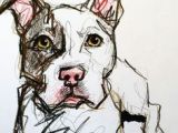 Drawing Pitbull Dogs 85 Best Dogs Images Animal Drawings Dog Paintings Drawings