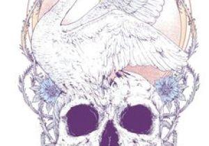 Drawing Rat Skull 611 Best Skull Art Images Skulls Drawings Illustrations