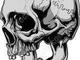 Drawing Scary Skulls Side View Of Gray Human Skull Tats Pinterest Skull Skull Art