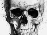 Drawing Skull Crossbones Skull Sketch Tattoo Skull Sketch Drawings Skull Art