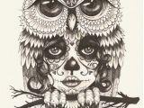 Drawing Skull Photo Skull Owl Wallpaper by Jokergirl29 0d Free On Zedgea