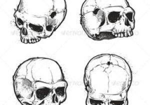 Drawing Skulls Tutorial 213 Best Skull Sketch Images Skull Skulls Skull Tattoos