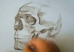 Drawing Skulls Tutorial Speed Drawing Human Skull How to Draw Skulls Video Lessons Of