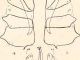 Drawing T.s.c I P U Stock Photos I P U Stock Images Page 15 Alamy