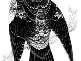 Drawing T Square Bird Illustration by Iain Macarthur T Square Illustration Art