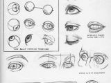 Drawing the Eye socket Character Design Collection Eyes Anatomy How to Draw Pinterest