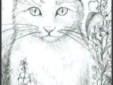 Drawing the Face Of A Cat Loki In the Garden Kolorowanki Antystresowe Pinterest Cat