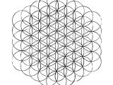 Drawing the Flower Of Life Step by Step Flower Of Life How to Draw It the Chemical Marriage
