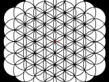 Drawing the Flower Of Life Step by Step Flower Of Life Sacred Geometry