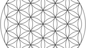 Drawing the Flower Of Life Step by Step How to Draw the Flower Of Life Snapguide