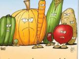 Drawing Vegetables Meme Steamed Vegetables Meme On Me Me