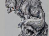 Drawing Were Wolf Pin by Werewolf Animation Studios On Werewolves Pinterest Lobos