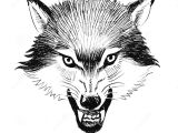 Drawing Wolf Black and White Angry Wolfs Stock Illustration Illustration Of Wild 110590464