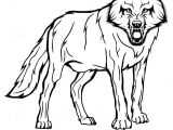 Drawing Wolf Black and White Vector Sketch Of A Wolf Stock Vector Illustration Of Face 96604247