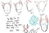 Drawing Wolf Ears Cat Ears Neko Text How to Draw Manga Anime How to Draw Manga