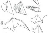 Drawing Wolf Ears How to Draw Anime Wolf Ears and Tail Google Search Wings In 2019