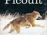 Drawing Wolf Hurt Jodi Picoult A Lone Wolf
