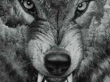 Drawing Wolf Studio Erstaunlich Wolf Tattoo Vorlagen Kostenlos Beste Modetrends
