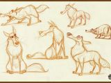 Drawing Wolf Studio Wolf Explorations Vipin S Character Design Pinterest Creature