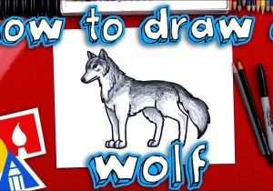 Drawing Wolves for Beginners How to Draw A Realistic Wolf Youtube