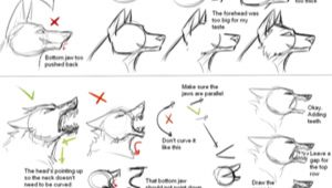 Drawing Wolves Tutorial How I Draw Wolf Heads by theshadowedgrim On Deviantart Animal