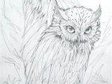 Drawing Wooden Things A Drawling Of Two Owls Things to Draw Pinterest Owl