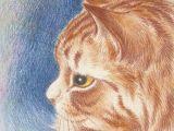 Drawing Yellow Eyes Yellow Eyed Cat by Louis Wain Cat Art Pinterest Cats Yellow
