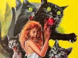 Drawings Of A Evil Cat 31 Best Evil Cats Images Funny Cats Cutest Animals Funny Kitties